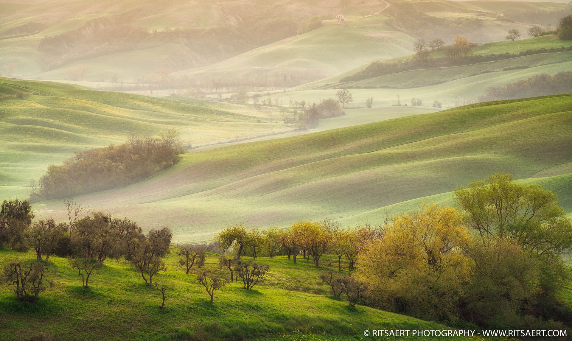 Spring in Tuscany - Italy